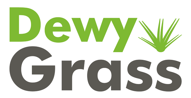 dewygrass